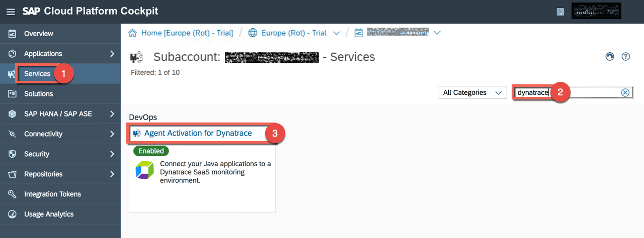 SAP Cloud Platform Neo Agent Activation