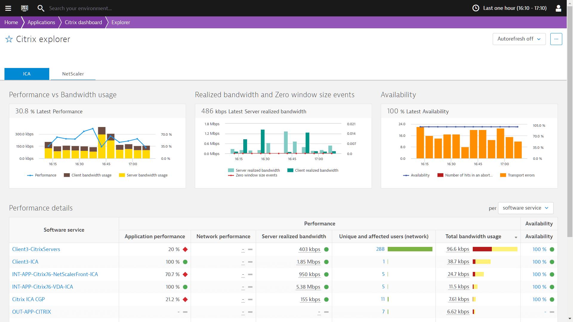 Citrix Report