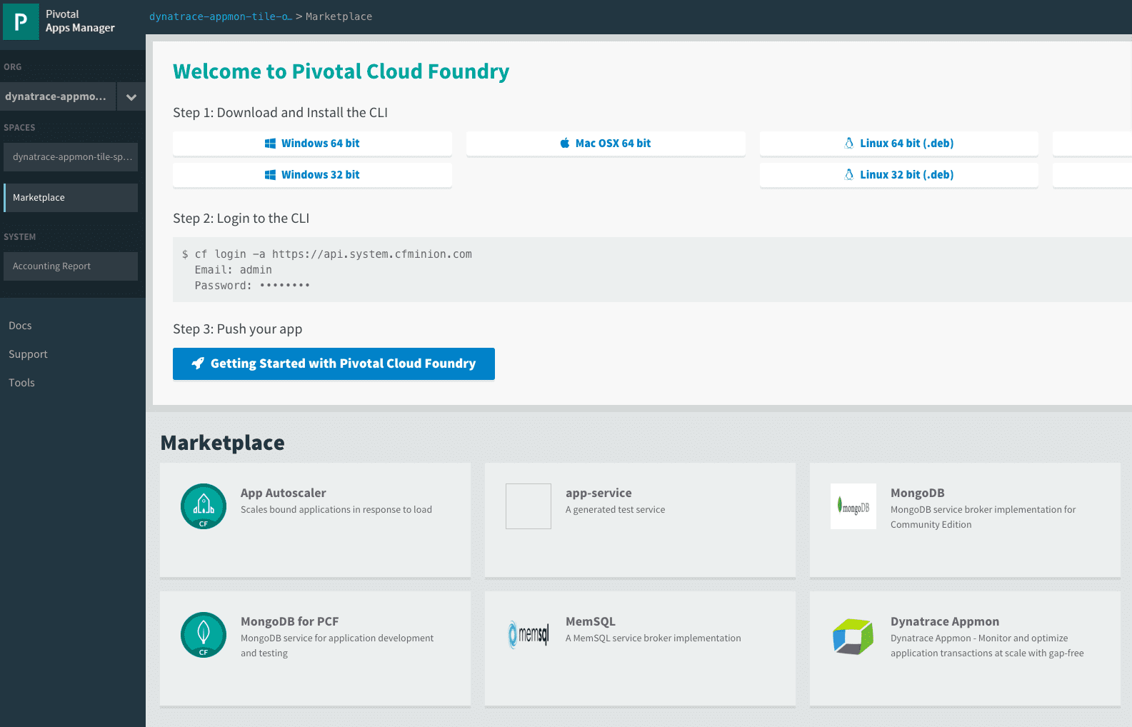 Deploy AppMon Java Agents on Cloud Foundry sample app