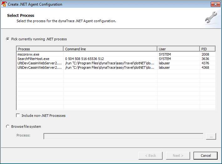 Select a process for .NET Agent configuration