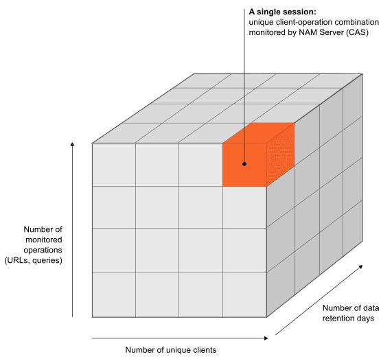 Factors determining NAM Server capacity