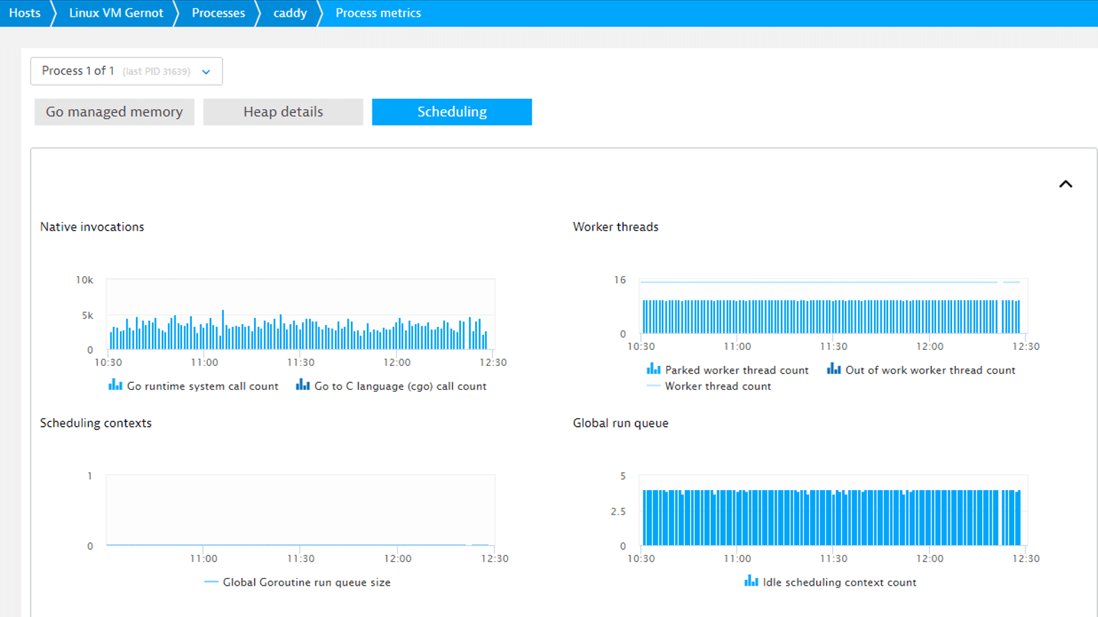 Dynatrace delivers all Go performance metrics at a glance.