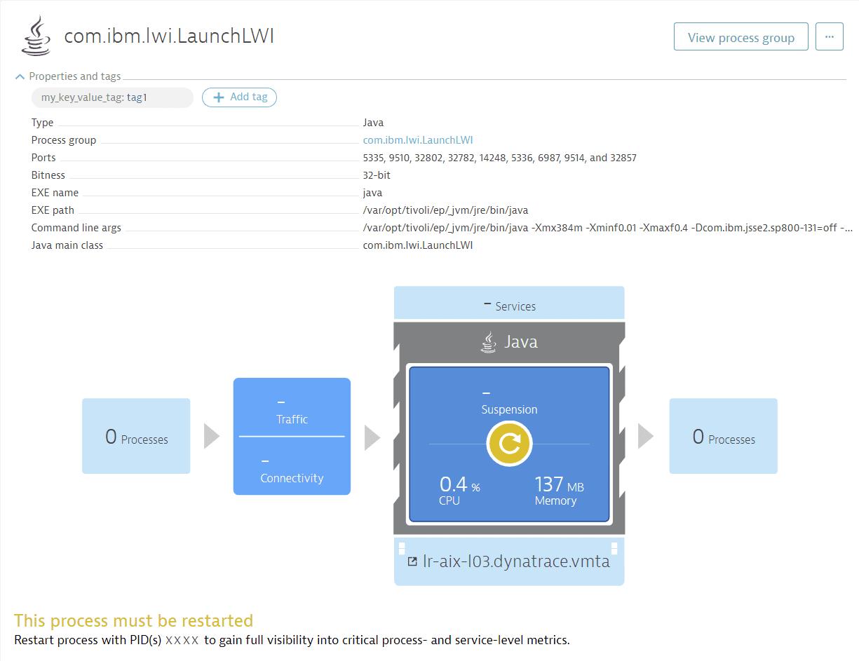 Host detail - process details