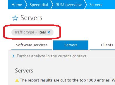Report filter display