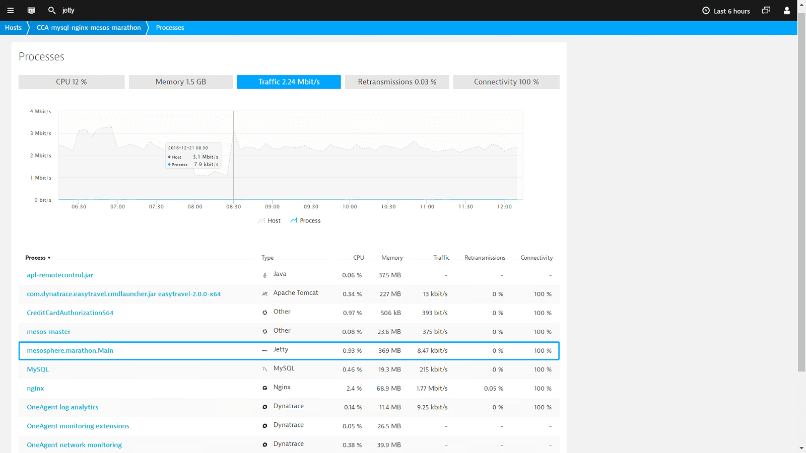 Jetty monitoring and performance management screenshot