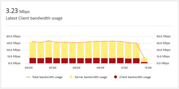 NAM: Network explorer: Bandwidth usage