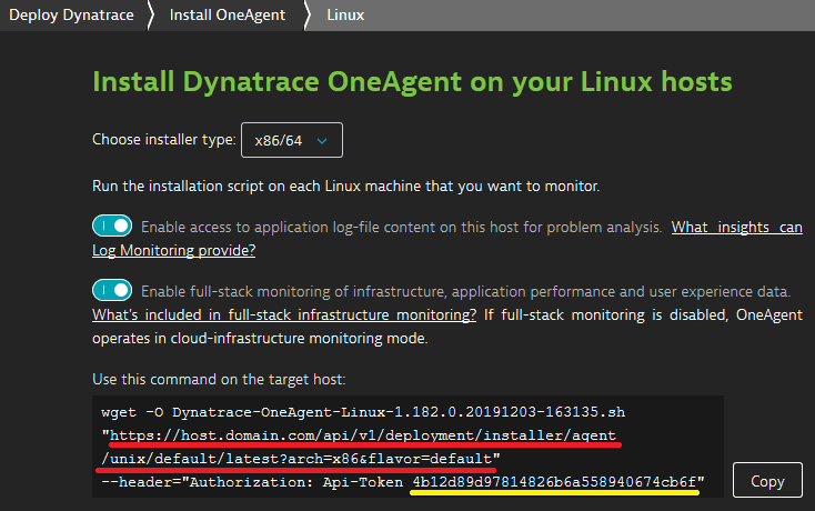 OneAgent installation page with URL to be modified