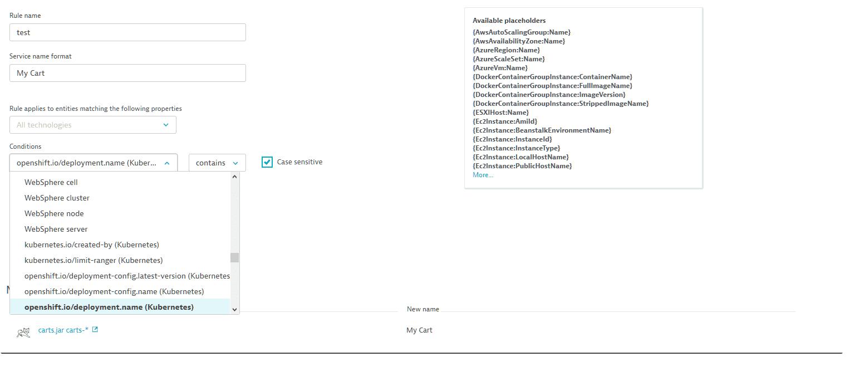 Customize process group names   Dynatrace Help