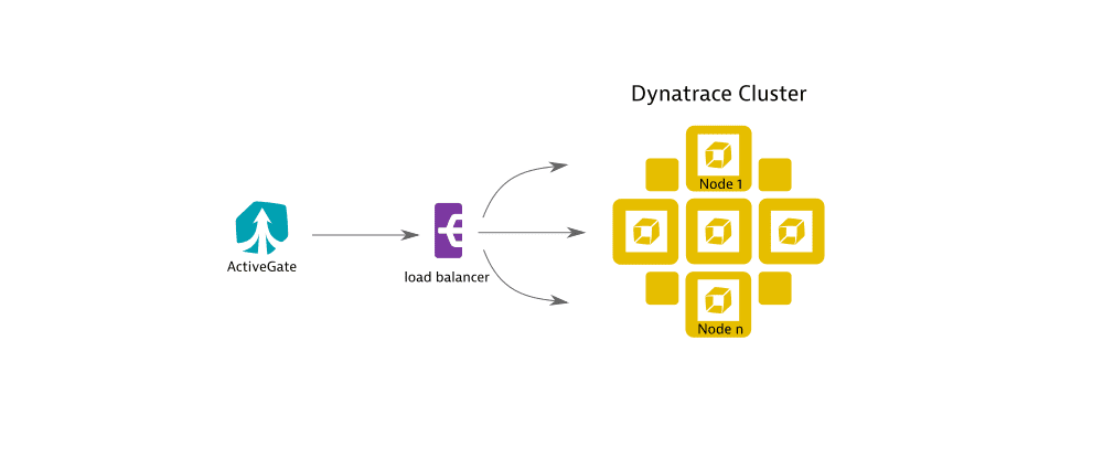 ActiveGate connecting to Dynatrace Cluster via reverse proxy/load balancer