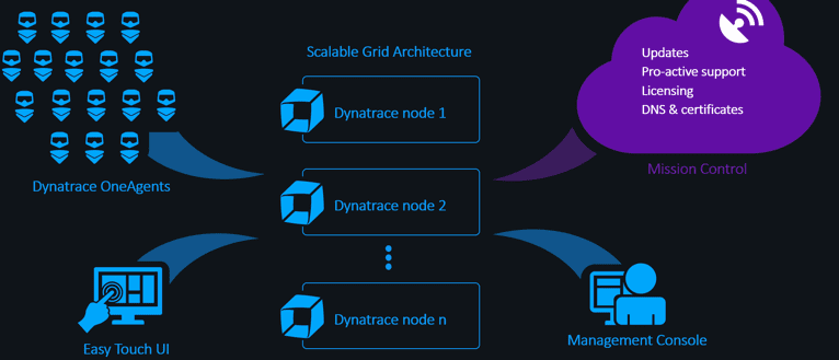 Scale-out cloud native architecture
