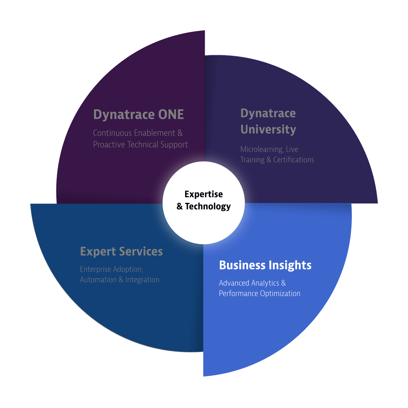 Dynatrace servicesSupportWheel business insights