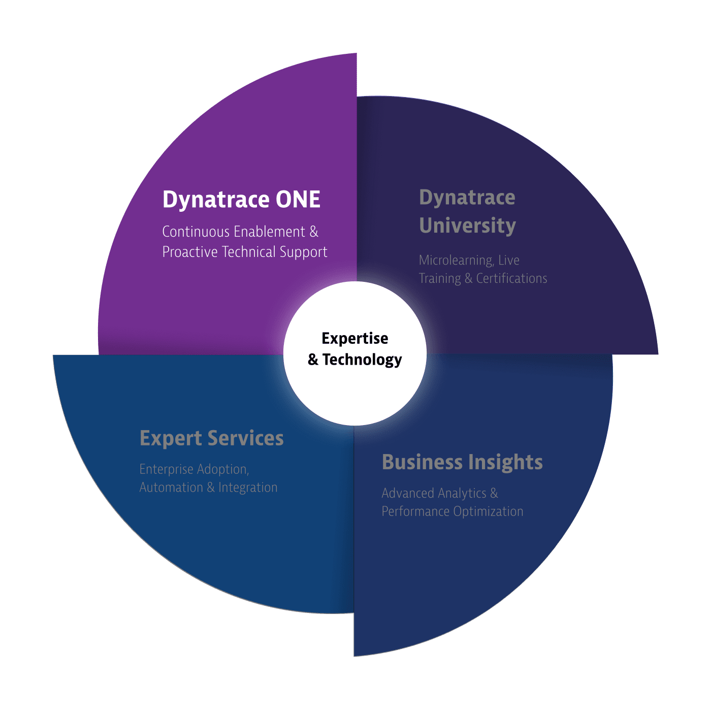 Dynatrace servicesSupportWheel dynatrace one