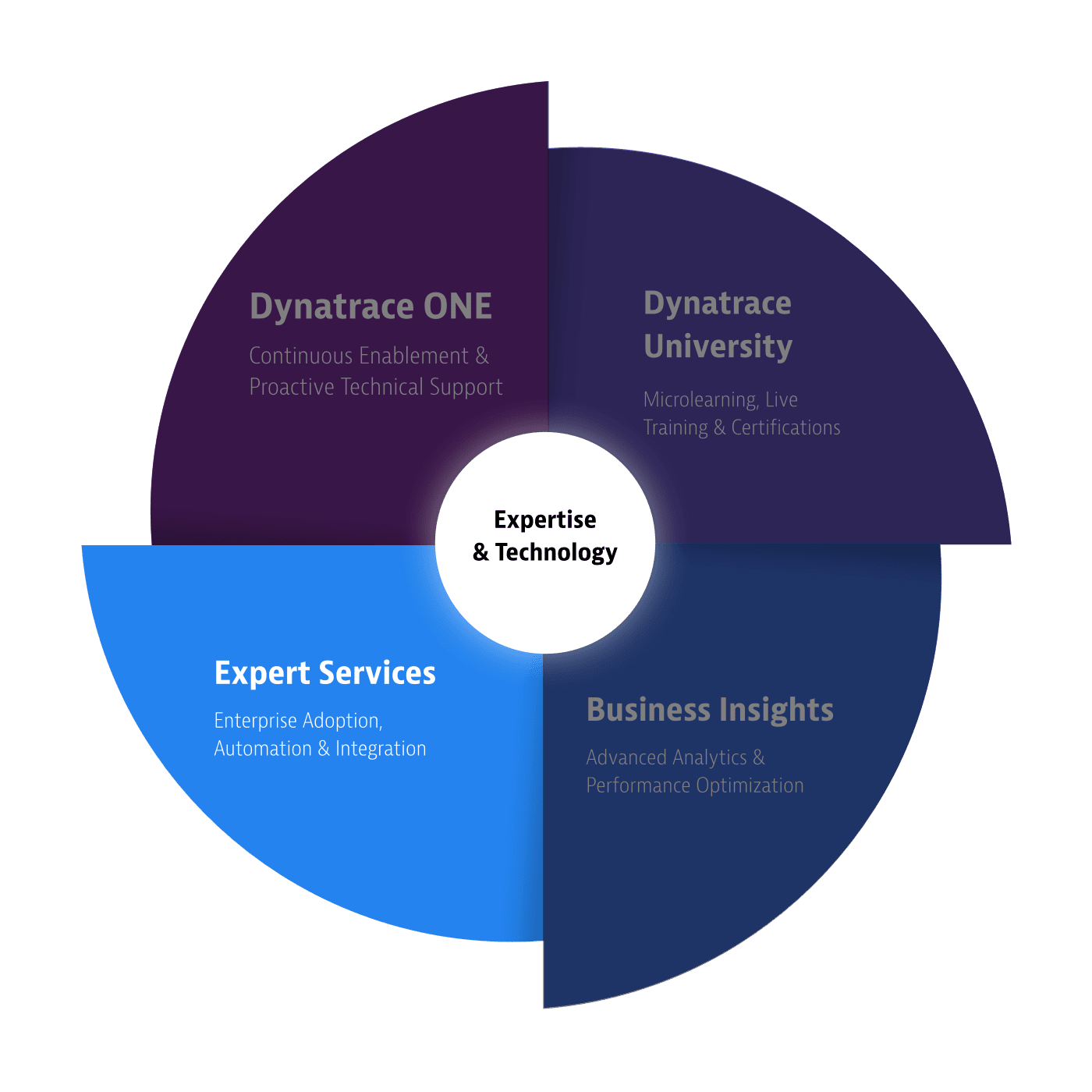 Dynatrace servicesSupportWheel experts services
