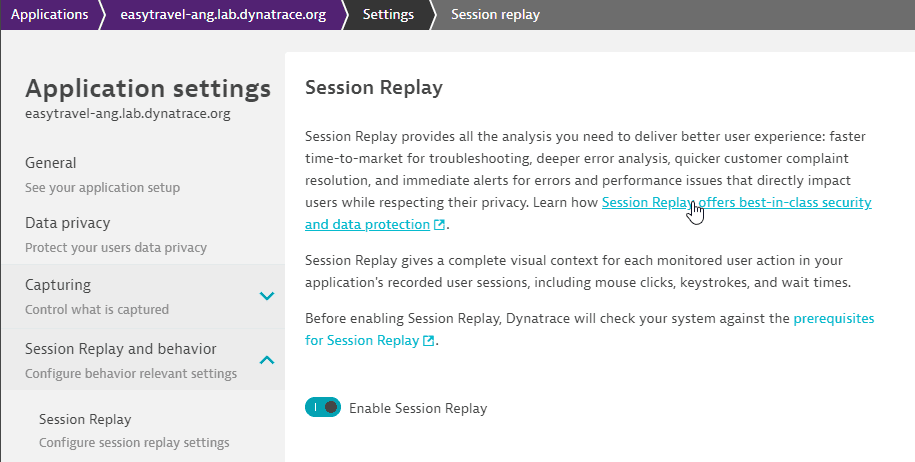 Session Replay security document