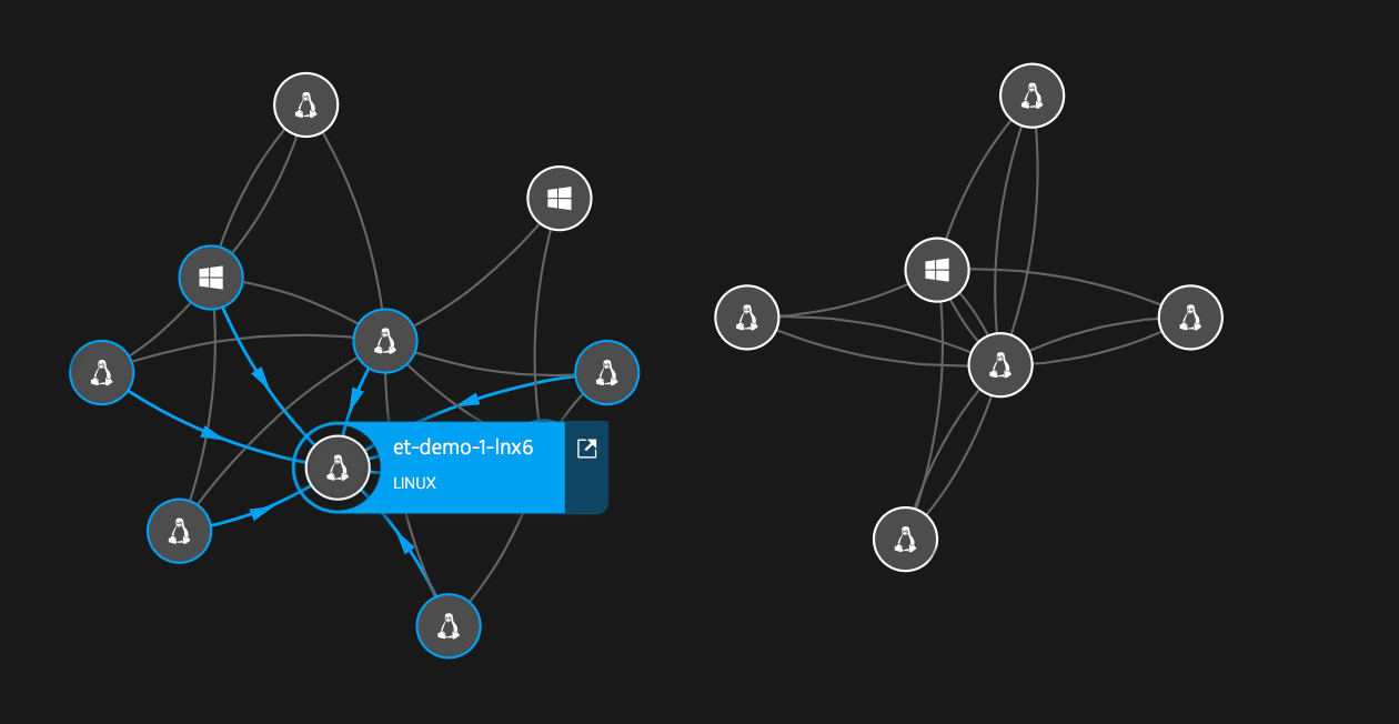 Smartscape host connection visualization.