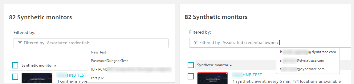 Synthetic monitor filters for credentials