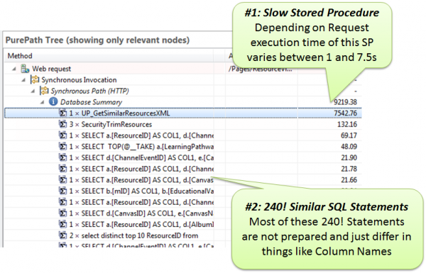 Developers can analyze which SQL statements are executed by their own code or 3rd party frameworks they use. In this case it was code executed by Telerik to populate .NET control data.
