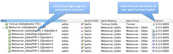 The Agent Overview dashlet of the Dynatrace client shows the connected agents.
