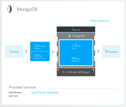 MongoDB Service Overview