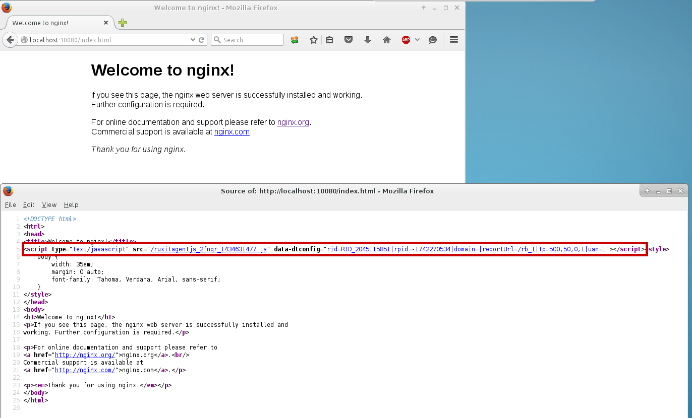 install nginx-extras from source