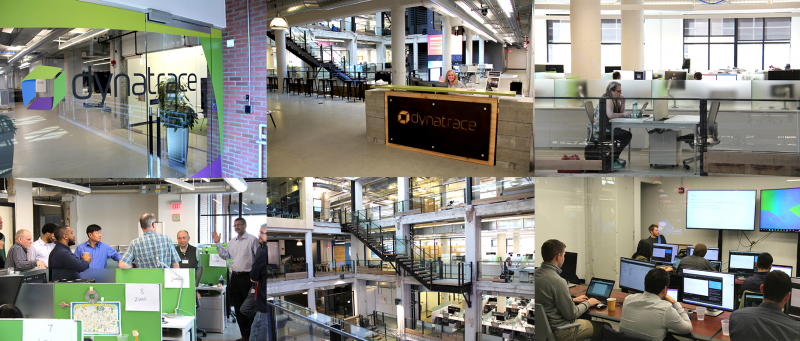Dynatrace Detroit - Office Culture