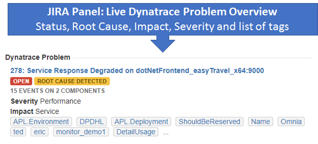 Web Panel where we show live Dynatrace Problem Overview including most critical meta data that you can also search for.