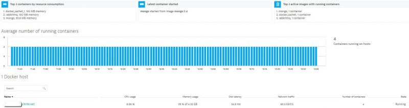 Dynatrace gives out-of-the-box overview into running containers and their resource consumption on the host
