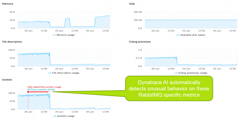 Dynatrace automatically alerts on critical limits of core RabbitMQ metrics such as high socket usage!