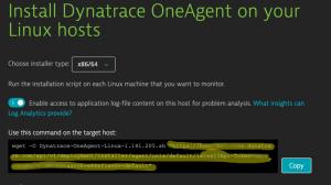 OneAgent URL