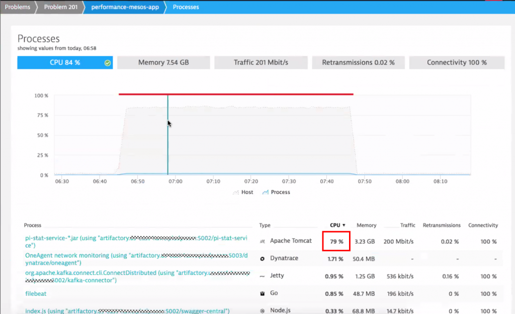 Dynatrace gives us key resource metrics for every process over time. Easy to spot that it was indeed Tomcat consuming all that CPU!