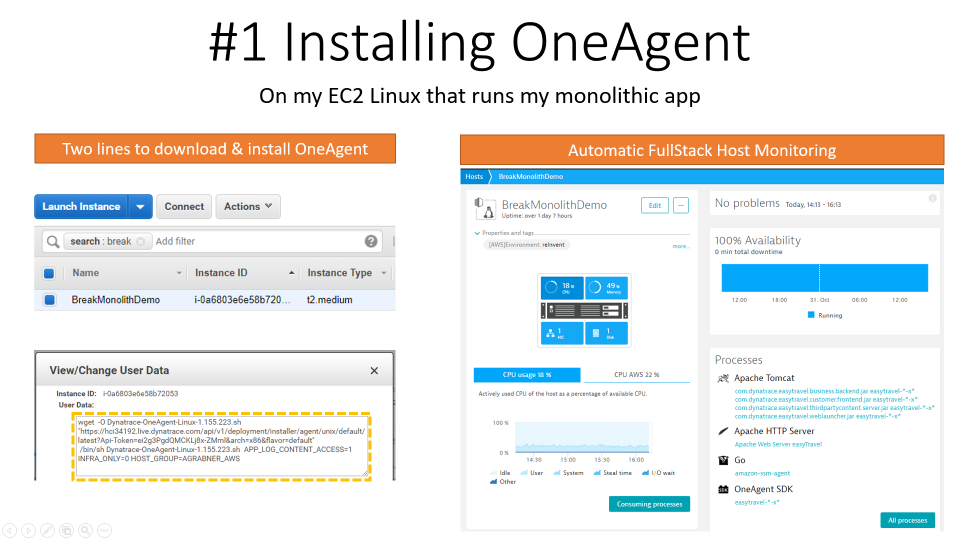 I only had to install the Dynatrace OneAgent on my host(s) where I am running my monolithic app(s)