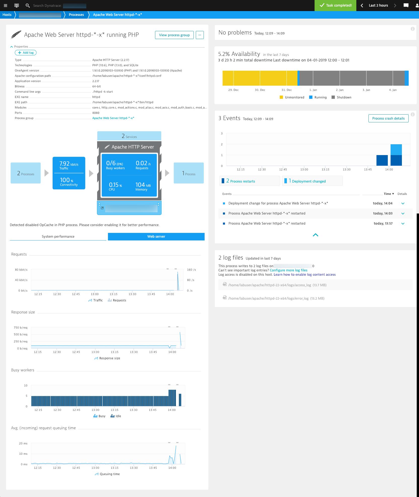 PHP 7.3 on Apache web server process details