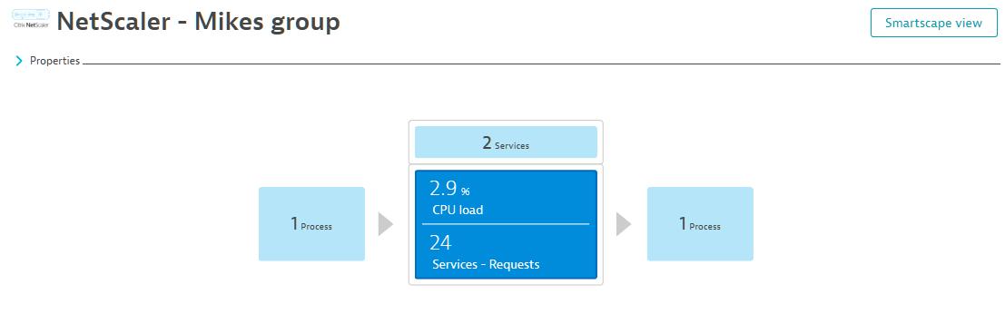 NetScaler processes