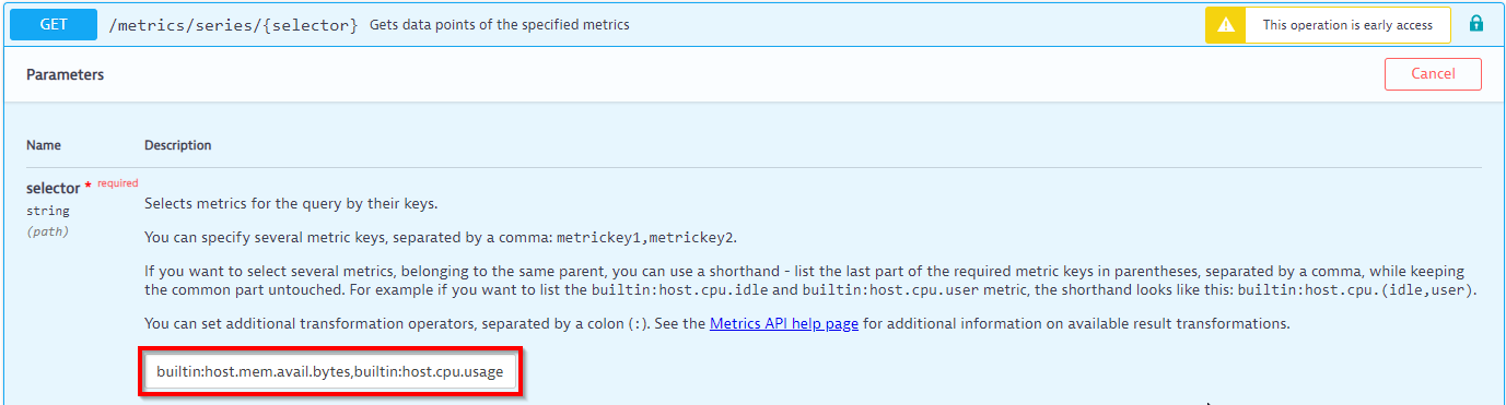 Screenshot Dynatrace API call