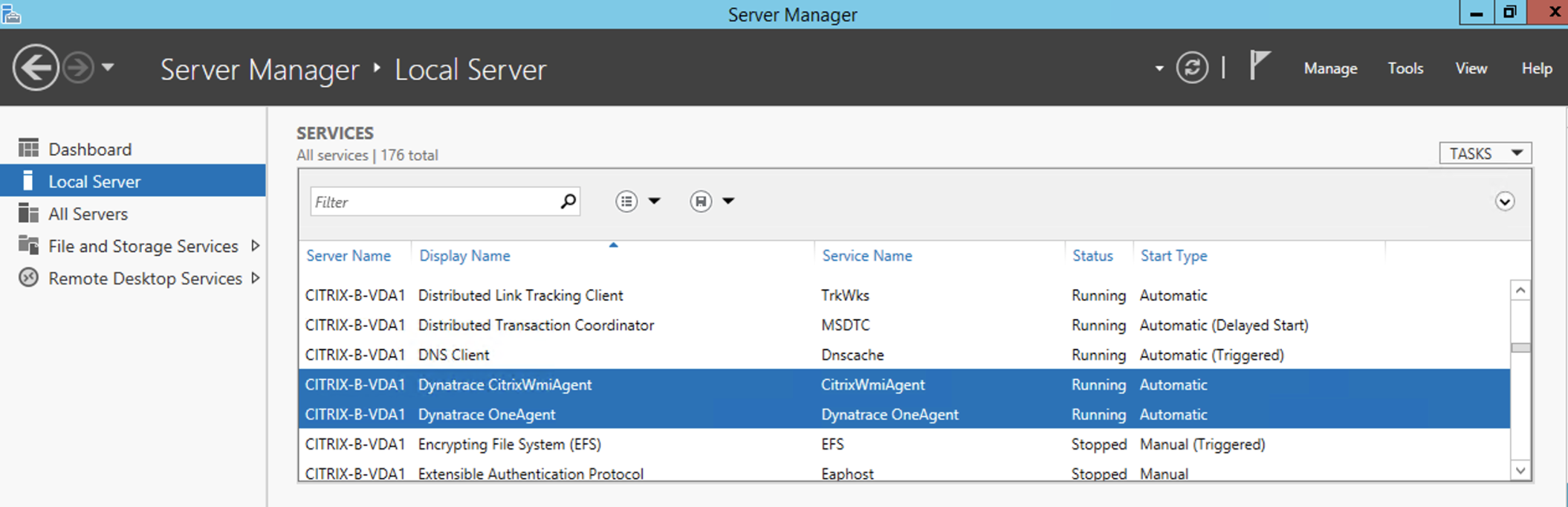 Two services run by the Citrix monitoring extension