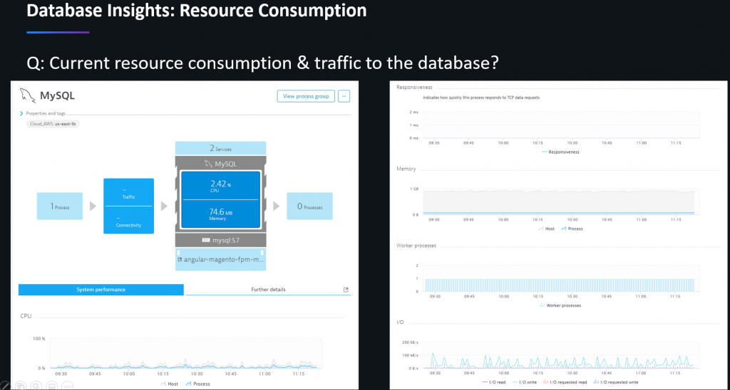 Use Dynatrace database resource utilization data for right sizing your lift & shift instances