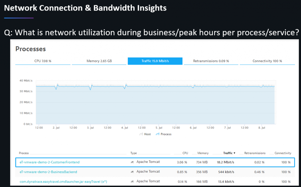 Dynatrace tells us about the peaks of network, cpu, memory usage for each host, process & service