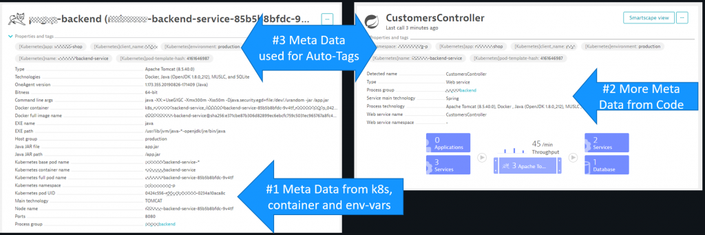 Dynatrace automatically captures meta data from k8s, container images and env variables. They can be converted to tags which act for filtering and access control