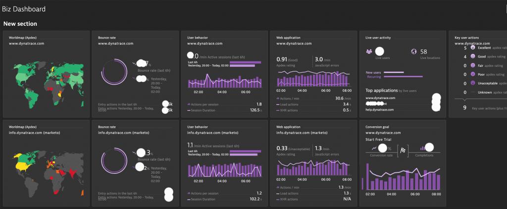 Screenshot Dynatrace Digital and Business Analysis