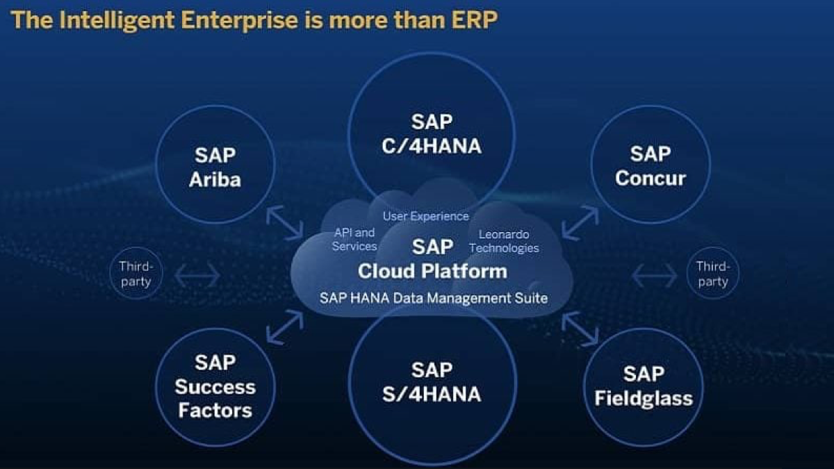 SAP Intelligent Enterprise underpinnings