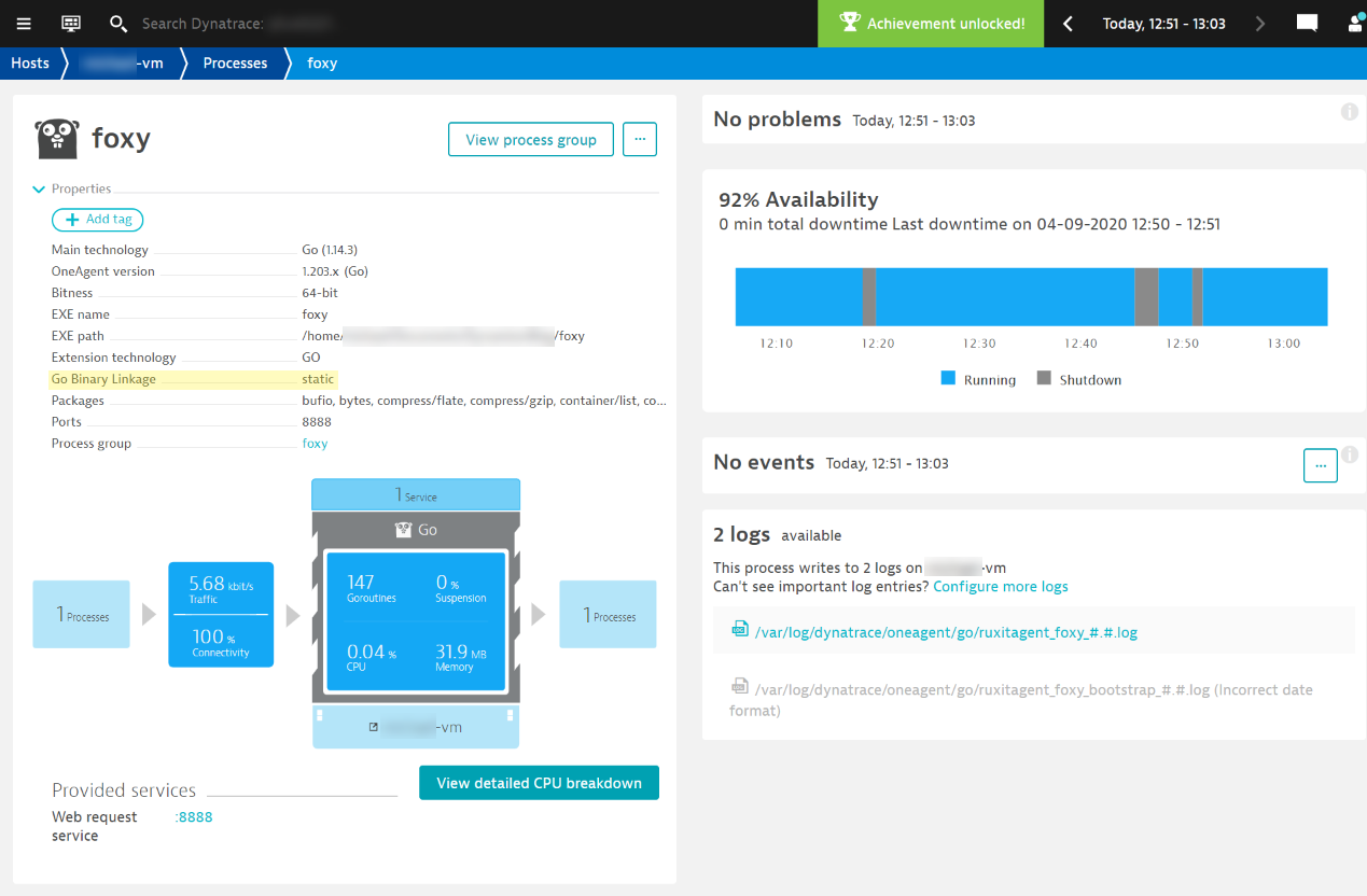 Statically linked Go application process page in Dynatrace