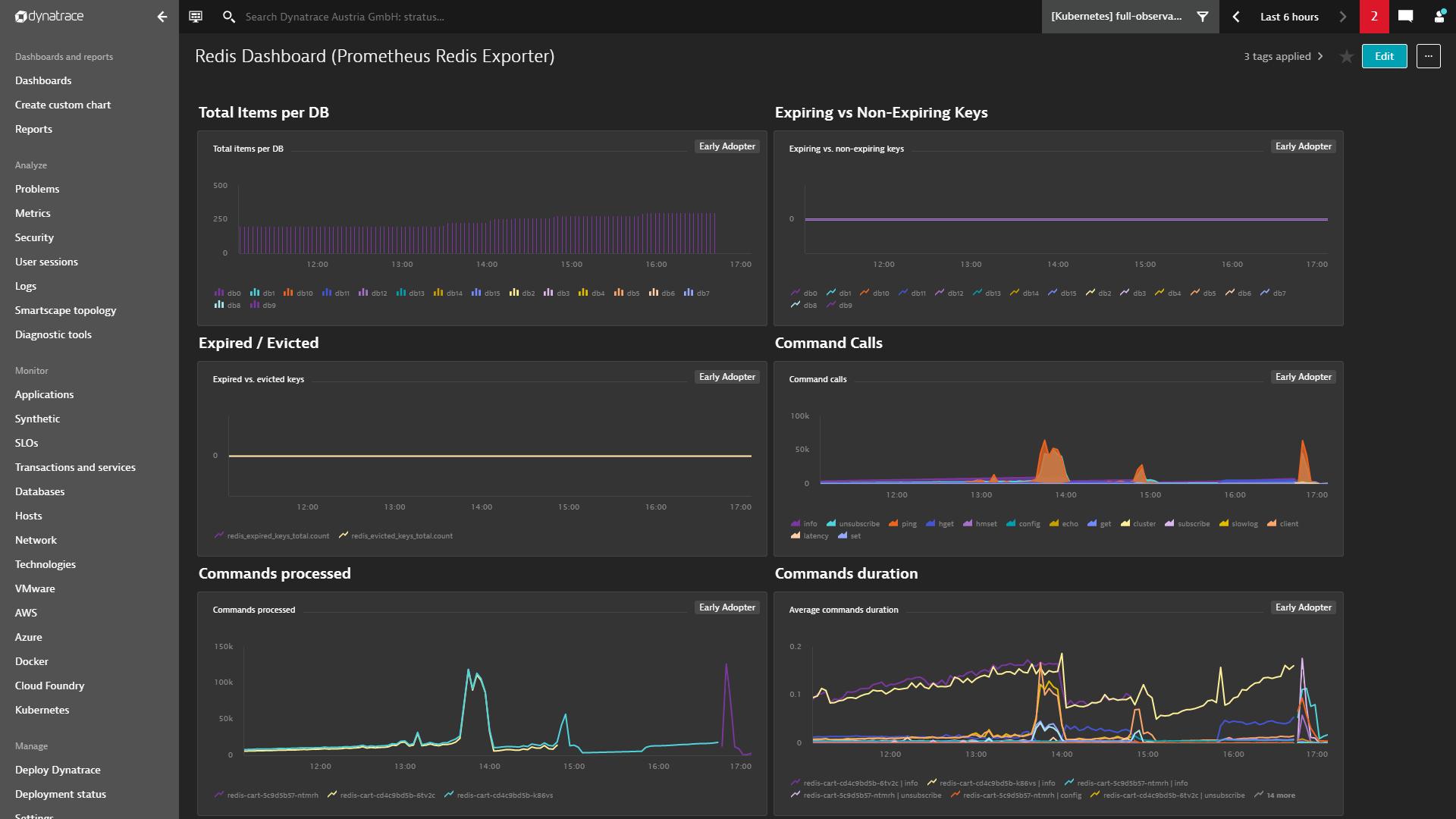 Screenshot Dynatrace custom charts explorer