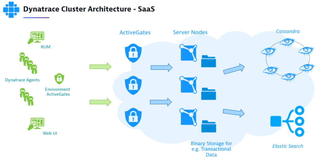 Dynatrace cluster architecture for SaaS and Managed