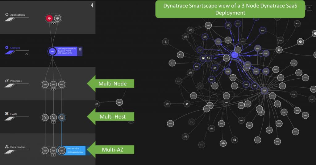 Screenshot Dynatrace live dependency information
