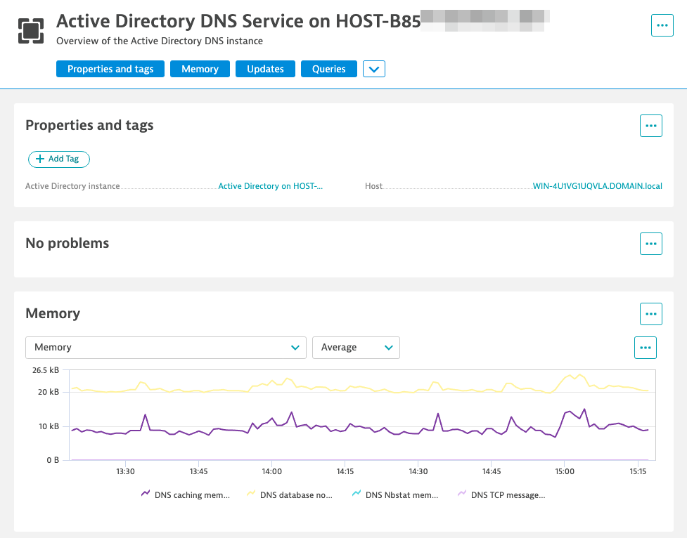 Active Directory DNS service analysis page