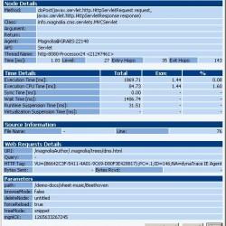 Servlet Details including parameter information