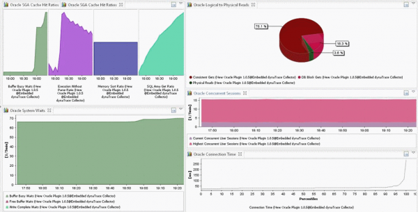 dynaTrace Dashboard showing key performance metrics queried from an Oracle Database via v$ tables